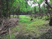 Brgy Kayumanggi Lipa City Batangas Farm Lot Sale