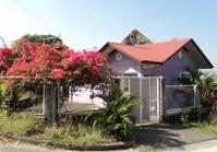 House Lot 233 Sale Sunnyvale 1 Brgy Pantok Binangonan