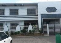 House Lot 252 Sale Primavera Subdivision Cabanatuan Nueva Ecija