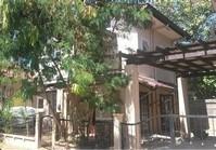 House Lot 81 Sale Collinwood Subdivision PH 4 Lapu-Lapu Cebu