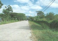 Vacant Farm Lot 176 for Sale Brgy Tibag Umingan Pangasinan