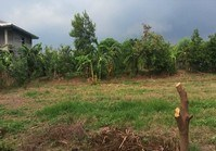 Foreclosed Vacant Farm Lot (SFO-304) for Sale Brgy Tigpalas San Miguel Bulacan