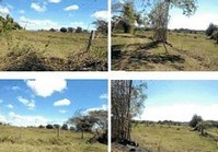 Foreclosed Vacant Farm Lot (T-187) for Sale Dulong Bayan San Jose del Monte Bulacan