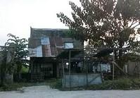 Vacant Farm Lot (LIP-217) for Sale Brgy Aplaya Pila Laguna