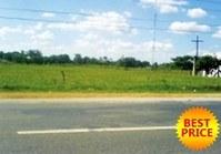 Foreclosed Vacant Farm Lot (SFO-062) for Sale Minante 2 Cauayan Isabela