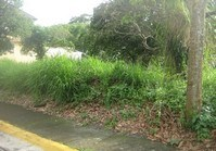 Vacant Lot 128 Sale Metrogate Tagaytay Estates Tagaytay Cavite