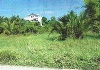 Vacant Lot 159 for Sale Brgy Concepcion Rosario La Union