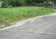 Foreclosed Vacant Lot (LIP-163) for Sale Hacienda Sta Monica Brgy Antipolo del Sur Lipa Batangas