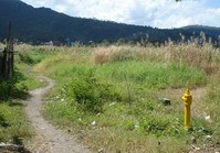 Foreclosed Vacant Lot (C-166) for Sale Diamond Spring Subdivision Brgy Pansol Calamba Laguna