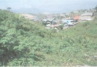 Foreclosed Vacant Lot (DAG-017) for Sale Crystal Cave Subdivision Baguio City Benguet