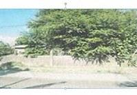 Vacant Lot 174 Sale Brgy San Vicente San Jacinto Pangasinan