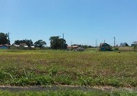Vacant Lot 185 Sale Vineyard Subdivision 4-A Dasmarinas Cavite