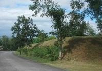 Vacant Lot 186 Sale Ayala Greenfields Estate 2 Calamba Laguna