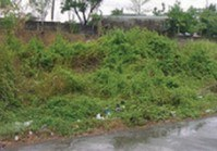 Vacant Lot 20 Sale Bankers Village 1 Bagumbong Caloocan City