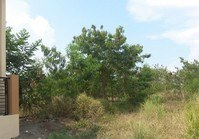Foreclosed Vacant Lot (LIP-202) for Sale Saint Jude Village Phase 2-C Brgy Ibabang Mayao Lucena Quezon
