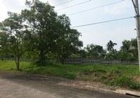 Vacant Lot 206 for Sale Sta Monica Phase 2 Lipa Batangas