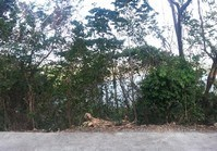 Foreclosed Vacant Lot (LIP-216) for Sale Tali Beach Subdivision Brgy Balaytigue Nasugbu Batangas