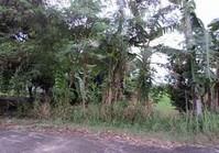 Vacant Lot 220 Sale Ayukit Subdivision Bocaue Bulacan