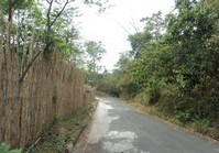 Foreclosed Vacant Lot (O-249) for Sale Beverly Hills Subdivision Brgy Dolores Taytay
