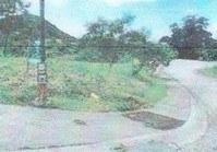 Foreclosed Vacant Lot (C-126) for Sale Ayala Greenfield Estates Phase 5-B Brgy Maunong Calamba Laguna