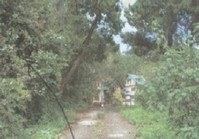 Vacant Lot 29 Sale Alphaville Subdivision Tuding Itogon Benguet