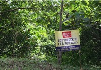 Foreclosed Vacant Lot (O-027 L7B10) for Sale Town & Country Estates Brgy Mayamot Antipolo