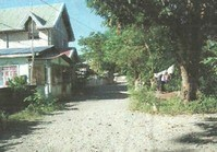 Vacant Lot 79 for Sale Brgy Station Dist Rosales Pangasinan