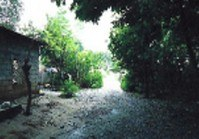 Vacant Lot (DAG-163) for Sale Poblacion Rosales Pangasinan