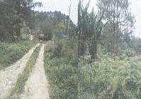 Vacant Lot (DAG-168) for Sale Brgy Irisan Tuba Benguet
