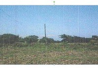 Vacant Lot (DAG-173) for Sale Taloy San Carlos Pangasinan