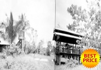 Foreclosed Vacant Poultry Farm Lot (SFO-067) for Sale Minante 2 Cauayan Isabela