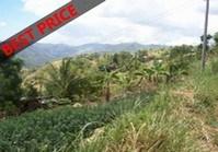 Vacant Farm Lot 11 for Sale Brgy Pung-ol Sibugay Cebu City