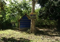 Vacant Farm Lot 13 for Sale Brgy Mabini Buenavista Guimaras