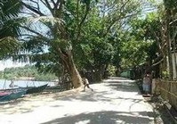 Vacant Farm Lot ILO-106 for Sale Brgy Hoskyn Jordan Guimaras