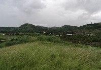Vacant Farm Lot (ILO-123) for Sale Brgy Dinginan Roxas Capiz