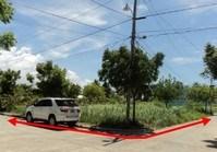 Foreclosed Vacant Lot (ILO-118) for Sale San Antonio Resort Village Phase 1 Brgy Baybay Roxas Capiz