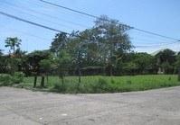 Foreclosed Vacant Lot (BAC-132) for Sale Villa Caridad Subdivision La Carlota Negros Occidental