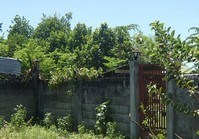 Foreclosed Vacant Lot (BAC-074) for Sale Brgy Agan-an Sibulan Negros Oriental
