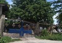 Foreclosed Vacant Lot (BAC-085) for Sale Bata Subdivision Brgy Bata Bacolod City