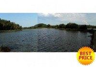 Vacant Lot / Fishpond 82 for Sale Brgy Agsilab Sapian Capiz
