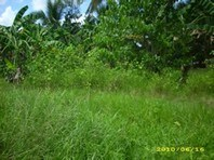 Bayugan Agusan Del Sur Foreclosed Vacant Lot Sale 1108844
