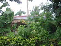 Foreclosed House & Lot for Sale in Ciudad Adelina Lakeshore Subdivision, Trece Martires, Cavite (AN-2378572)