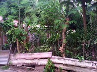 Golden Valley Homes Cebu City Foreclosed Vacant Lot Sale 0851259