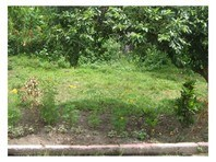 Foreclosed Vacant Lot for Sale in Happy Homes Greenview, Daet, Camarines Norte (AN-1247135)