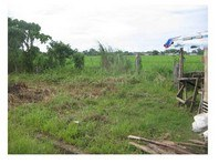 Happy Homes Subdivision Daet Foreclosed Vacant Lot Sale 0160434