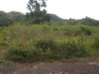 Paragon Village Roxas City Capiz Foreclosed Vacant Lot Sale 0039835
