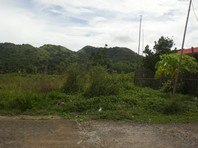 Foreclosed Vacant Lot for Sale in Paragon Village Subdivision, Roxas City, Capiz (AN-0045187)