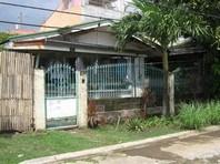 Pitimini Village Ii San Pedro Laguna House Lot Sale 1415007
