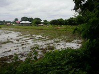 Foreclosed Vacant Lot for sale in Balungao, Pangasinan (AN-1005449)