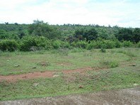 St Francis Village Limay Bataan Foreclosed Vacant Lot Sale 2062025